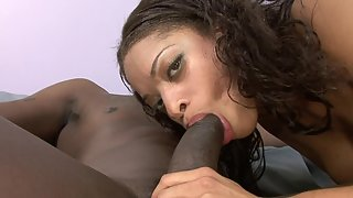 Ebony with perfect booty gives head and gets pussy banged