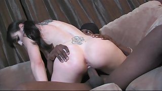 Dark-haired babe gets trimmed pussy fucked