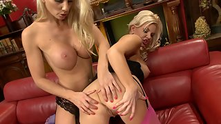 Two cute lesbian hotties with huge hooters licking muff